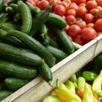 В России готовятся запретить ввоз всей растительной продукции из ЕС