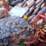 У россиян на границе изымают иностранную рыбу и мясо