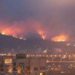 Россияне хотят воевать с Америкой, пожары в Сибири их не интересуют