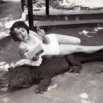 Парк ручных аллигаторов как способ провести выходные всей семьей