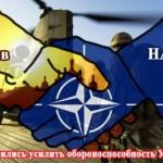Практически все украинцы хотят в НАТО