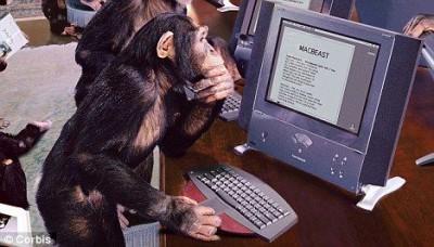monkey-computer[1]