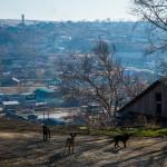 Как живет один из богатейших городов мира