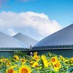 В Украине хотят замещать до 7,2 млрд куб. газа в год за счет биоэнергетики
