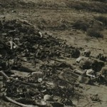 «Прекрасная страна», которую сотрудники НКВД  «потеряли»