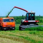 Украина к 19 ноября намолотила 58,7 млн тонн зерна