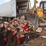 В Крыму уничтожают все импортные продукты питания