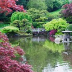 Шесть «тайных» садов Нью-Йорка
