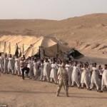 ИГИЛ и Асад находятся в сговоре – британские СМИ