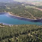 Леса на территории Израиля