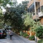 Кому-то везет: скончавшийся житель Тель-Авива завещал 7 своих квартир арендаторам