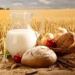 Украина увеличила продажи агропродукции в ЕС на 11%