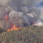В Израиле наградили 10 украинских спасателей за ликвидацию хайфских пожаров
