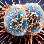 Противозачаточные таблетки снижают риск заболевания раком – ученые