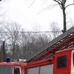 Житель РФ сжег деревню, потому что «в ней сидели питерские моджахеды»