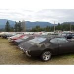 В Канаде продают кладбище старых и антикварных автомобилей