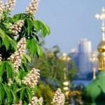 S&P подтвердило рейтинг Киева на уровне «B-»