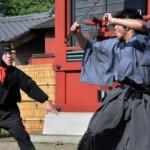 Из британских школ изъяли сотни ножей и самурайских мечей
