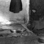 50 с лишним лет назад появилась первая в Израиле хиппи-коммуна