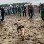 В России на рок-фестивале утонуло в грязи 8 тысяч автомобилей