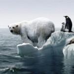 Все ледники Земли растают к 2100 году — ученые