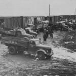 Черные страницы — как Сталин депортировал украинцев
