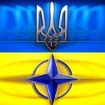 Вступление в НАТО поддерживает уже более 60% украинцев