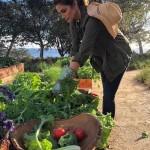 Синди Кроуфорд показала, как работает на «своем маленьком огородике»