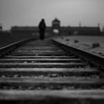 Израиль раскритиковал отрицание причастности Польши к Холокосту