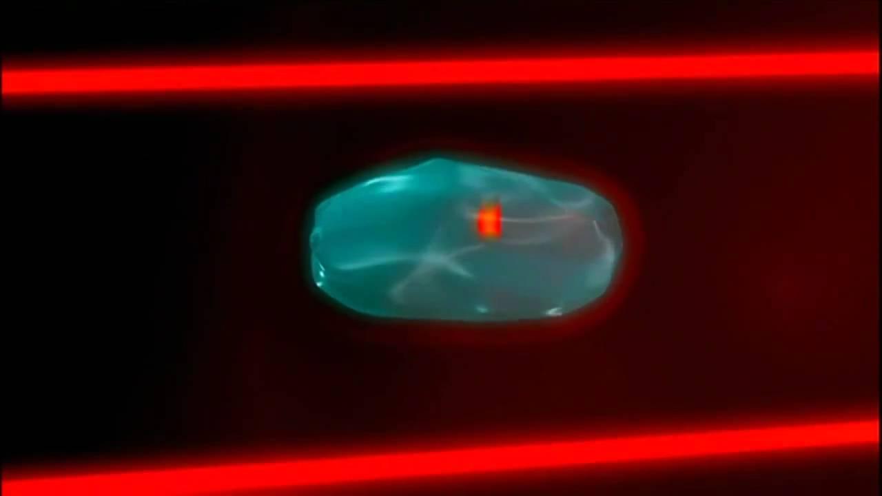 Физики смогли заморозить свет