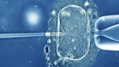 rp_92473492_m8020231-in_vitro_fertilization_light_microscope-spl-400x224.jpg