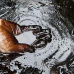 Нефть летит за $80 — чем это опасно для России