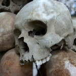 «Дождался пенсии» — в Петербурге возле офиса «Единой России» оставили скелет