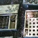 На Днепропетровщине в лесополосе нашли большой нелегальный арсенал взрывчатки и боеприпасов