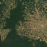 Кто рубит российский лес?
