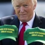 Мэттис — Трамп примитивен и недалек
