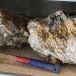 В Австралии нашли гигантские золотые самородки