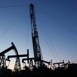 Жена украинского «кума Путина» владеет одним из крупнейших месторождений нефти в Югре