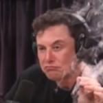 Илон Маск договорился: Минюст США завел на Tesla уголовное дело