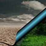 Глобальное потепление уменьшило количество насекомых на Земле