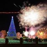 В США неизвестный залез на рождественскую ель у Белого дома