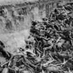 Новое исследование о Холокосте: «Четверть из 6 миллионов были уничтожены за 100 дней»