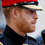 Принц Гарри поучится отражать «российскую агрессию»