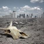 Изменения климата уничтожат привычную еду — исследование