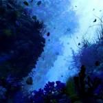 Загрязнение океанов: в желудке мертвого кита обнаружили 40 кг пластика