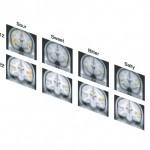 Ученые разметили карту вкусов в головном мозге человека