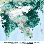 Китай и Индия больше всех озеленяют планету с 2000 года