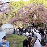Правительство Японии провозгласило эру Рэйва
