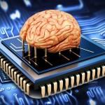 Ученые разработали квантовый материал, способный в будущем «скачивать мозг»