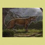 Живший 22 миллиона лет назад «большой лев из Африки» оказался одним из крупнейших хищных
